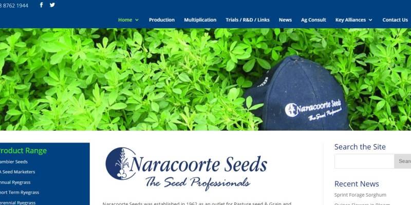 Naracoorte-Seeds-Gusto-Marketing